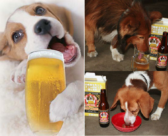 japan_happy_lager_02